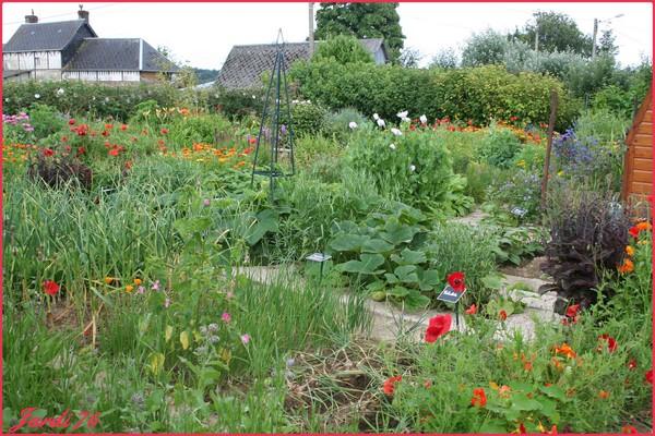 Découvrez le jardin potager de Jardi76 Jardi76_e2f0fa2f61f5fc66b48a2b9bde122a5e